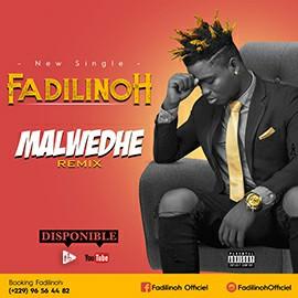 Fadilinoh - Malwedhe (Remix)
